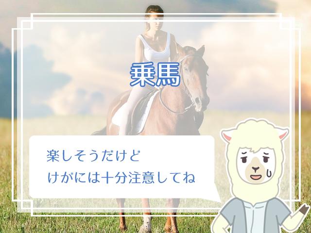 乗馬をする